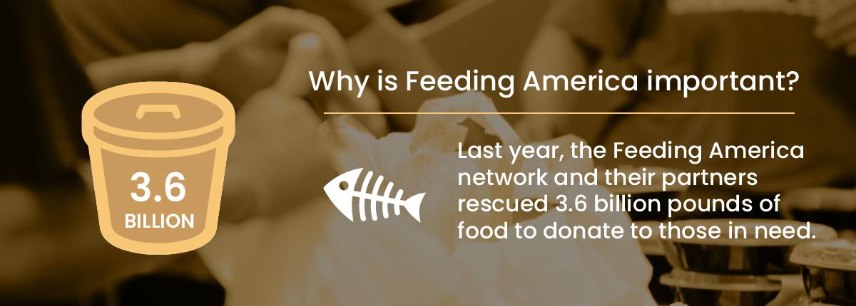 Compel + Feeding America